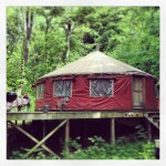 30′ Pacific Yurt on 22 acres in Northern Kentucky for sale