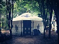 yoni yurt in the woods